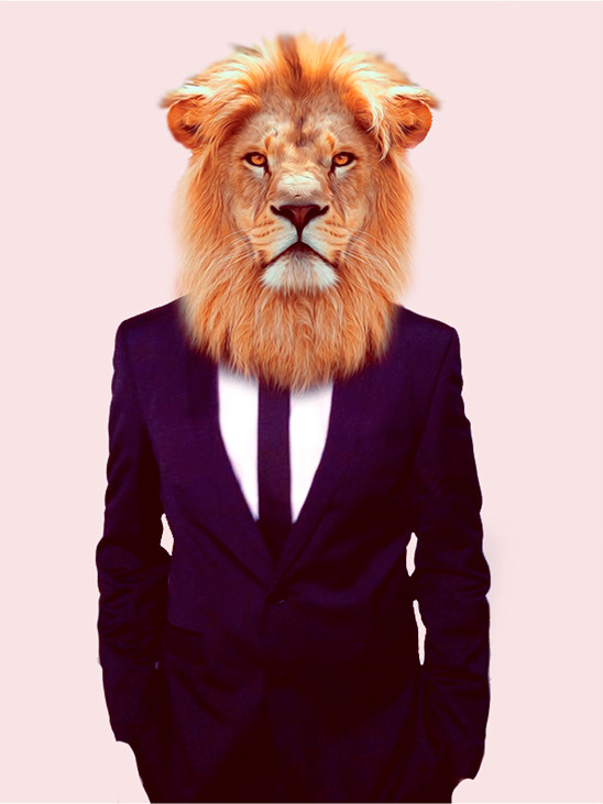King of the Digital Jungle - delivering a wide range of digital marketing services.